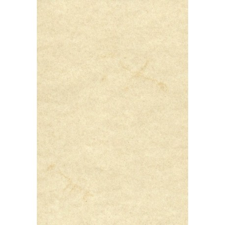 Elephant Hide Paper by Zanders - White Color