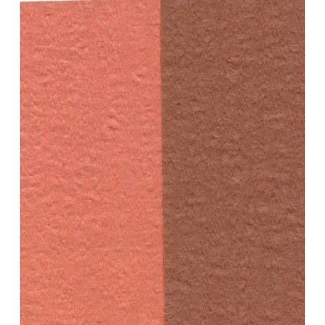 100 mm_  12 sh - Crepe Paper - Double Sided Orange and Brown