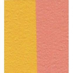 100 mm_  12 sh - Crepe Paper - Double Sided Orange/Yellow