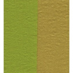 100 mm_  12 sh - Crepe Paper - Double Sided Green/Pale Brown