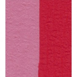 100 mm_  12 sh - Crepe Paper - Double Sided Red/Pink