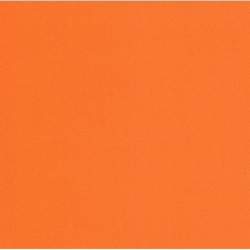 250 mm_  20 sh - TANT Paper Orange Color