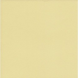 Origami Paper TANT Creme Color - 150 mm - 50 sheets