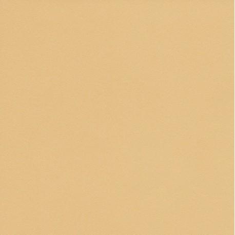 250 mm_  20 sh - TANT Paper Sand Color