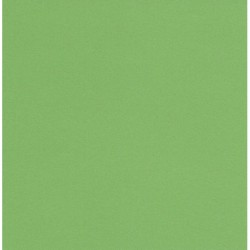 Origami Paper TANT Light Green Color - 150 mm - 50 sheets