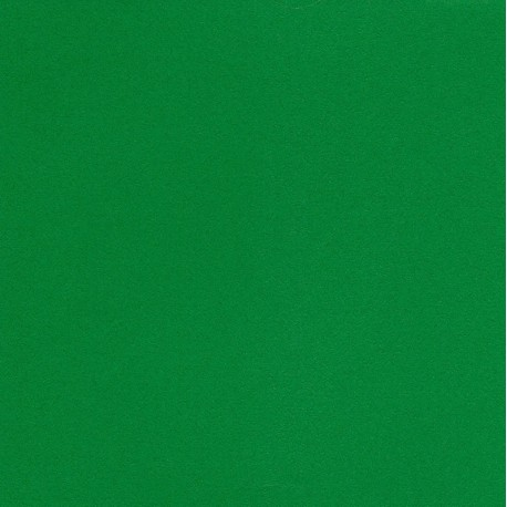 250 mm_  20 sh - TANT Paper Green Color