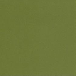 Origami Paper TANT Olive Green - 150 mm - 50 sheets