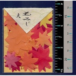 Washi Paper Set Autumn Color Leaves Punch Outs