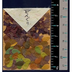 Washi Paper Set Acorns And Leaf Punch Outs