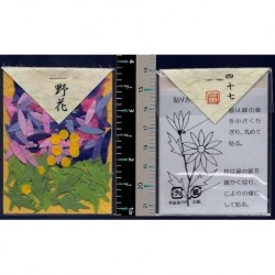 Washi Paper Set Wildlower Punch Outs