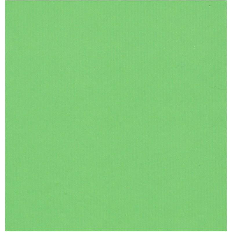 Kraft Paper By Kartos Solid Light Green