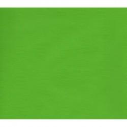 600mm_   1 sh -  Kraft Paper Green