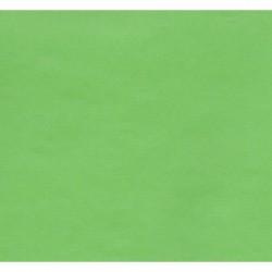 Kraft Paper by Kartos - Light Green - 300 mm - 6 sheets