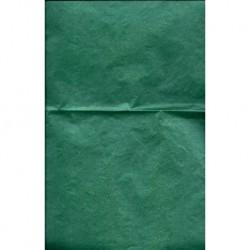 Tissue Paper Pearlized Dark Green