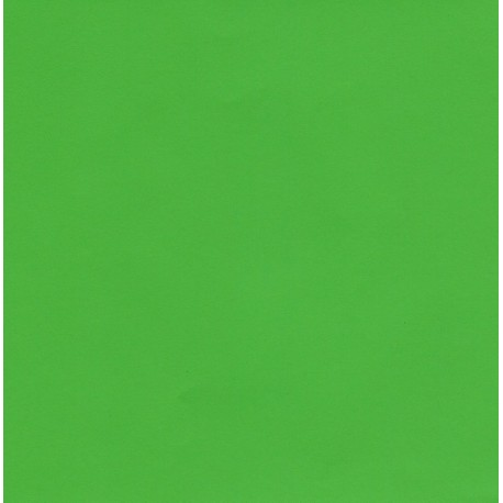 Kraft Paper Double Sided Lime Green - 660mm - 1 sheet