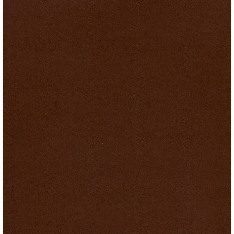 Dark Chocolate Paint Color