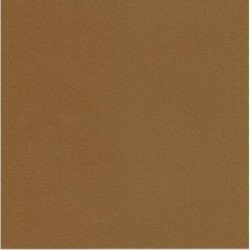 250 mm_  20 sh - TANT Paper Brown Color