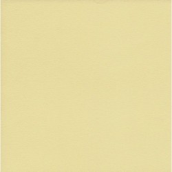 Origami Paper TANT Creme Color - 250 mm -  20 sheets