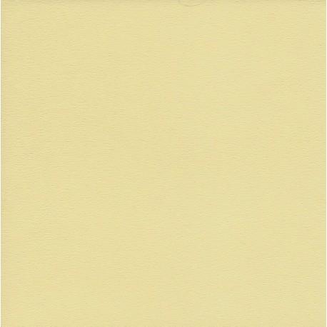 250 mm_  20 sh - TANT Paper Creme Color