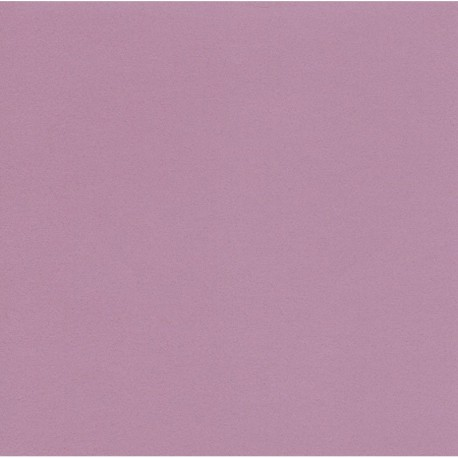 250 mm_  20 sh - TANT Paper Light Purple Color