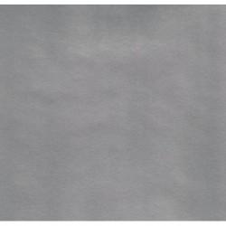 Kraft Paper Silver Metallic - 600mm - 1 sheet