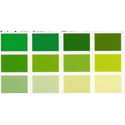 Origami Paper TANT Paper Green Color - 150 mm - 48 sheets