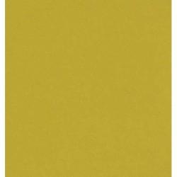 150 mm_  10 sh - Gold Matte Foil Paper