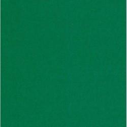 075 mm_ 200 sh - Dark Forest Green Origami Paper