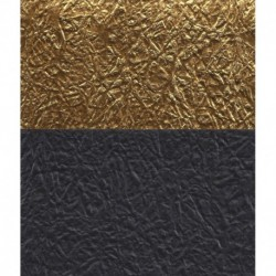 Origami Paper Double - Sided Black and Gold Momigami Washi-75 mm-40 sh