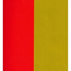 250 mm_   5 sh - Double-Sided Red and Matte Gold Paper