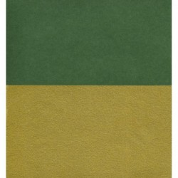 150 mm_ 10 sh - Double-Sided Green and Matte Gold Paper