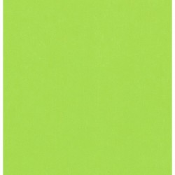075 mm_   35 sh - Yellow Green Color Origami Folding Paper