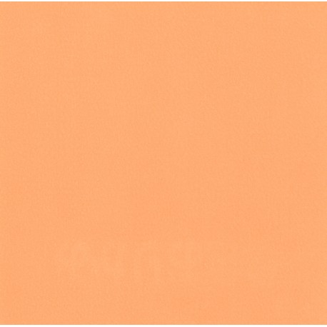 28 Pale Orange Color Light Orange Artist Acrylic