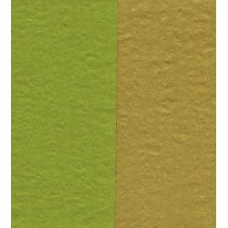 150 mm_  12 sh - Crepe Paper - Double Sided Green/Pale Brown