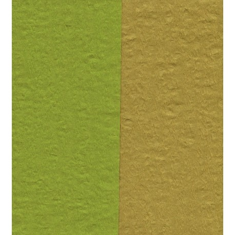 Crepe Paper - Double Sided Green and Pale Brown - 150 mm -  12 sheets