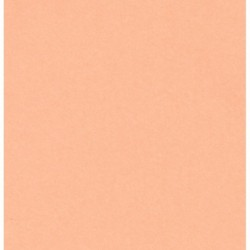 Origami Paper Light Peach Color - 150 mm - 100 sheets