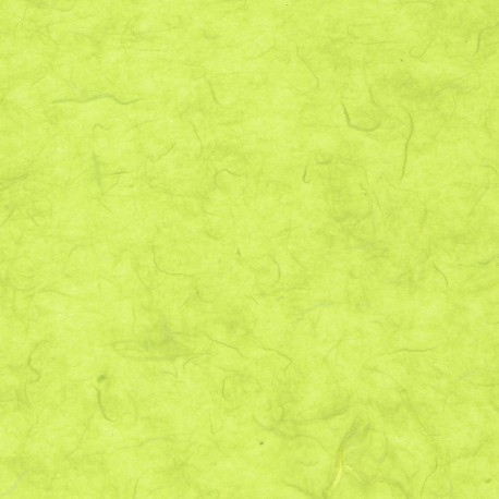 Pale Lime Green Mulberry Kozo Paper