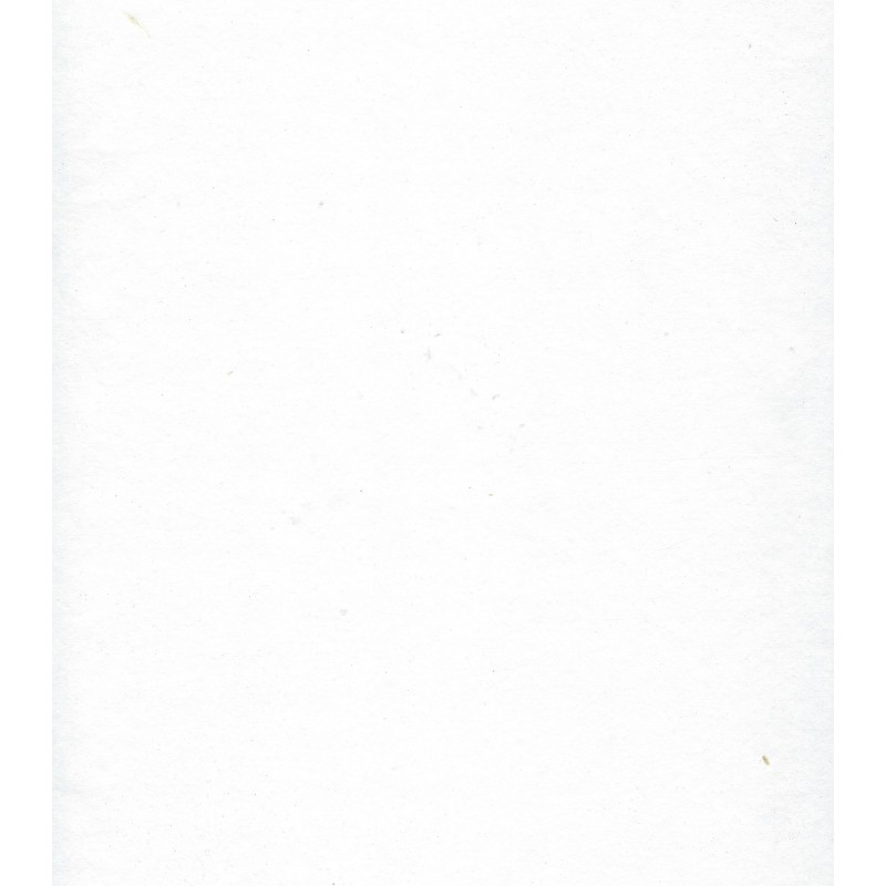 Mulberry Paper - White
